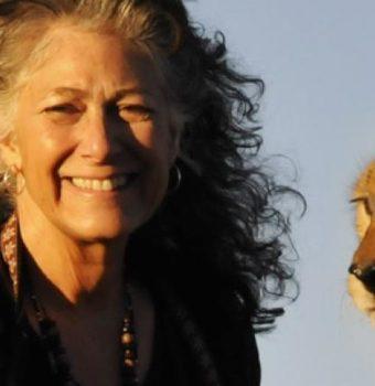 Cheetah Conservation Fund Celebrates 25 Years