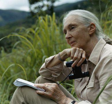 Jane Goodall 1