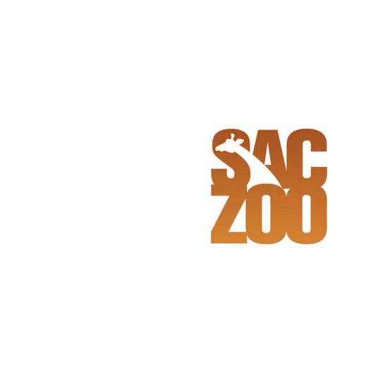 saczoo logo-right (1)