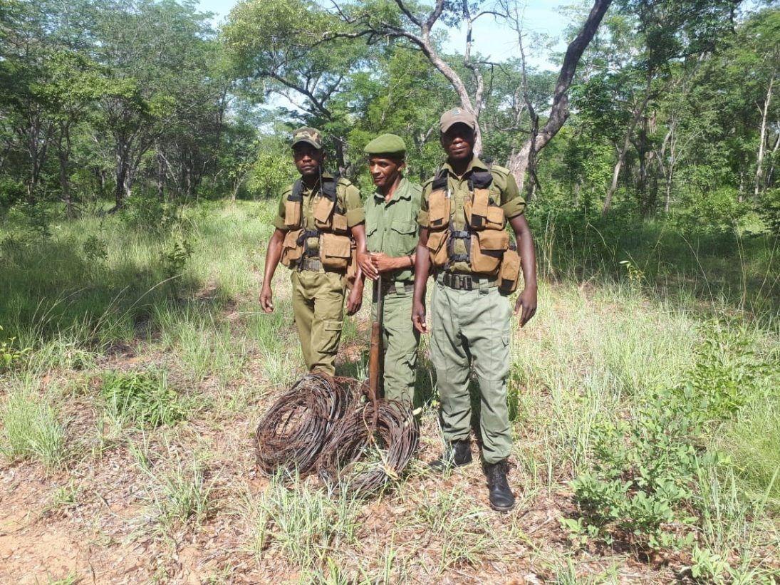 cwf antipoaching